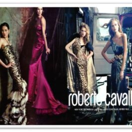 BRAND: ROBERTO CAVALLI<br> OFFER NUMBER: 8006<br> DATE: May-21