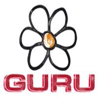 BRAND: GURU<br> OFFER NUMBER: 750<br> DATE: October-20