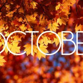 ***🌟 >> RECAP LATEST LUXURY OFFERS – MID OCTOBER 🌟***
